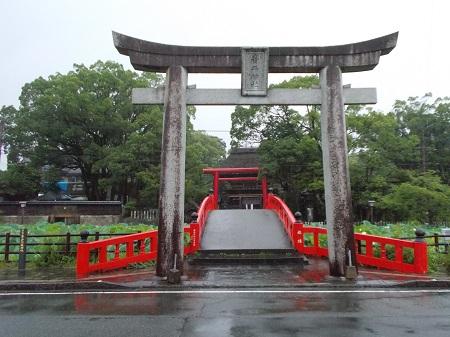 kumakuru058.JPG