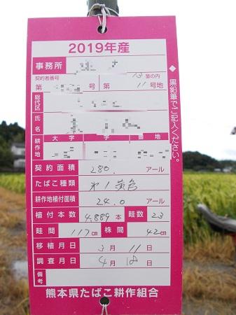 kumakuru104.JPG