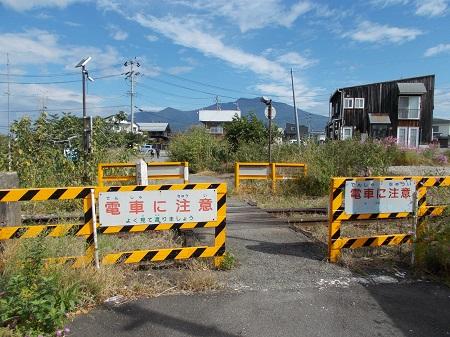 sawashi110.JPG